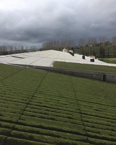 Démoussage murs et toitures bâtiments agricoles